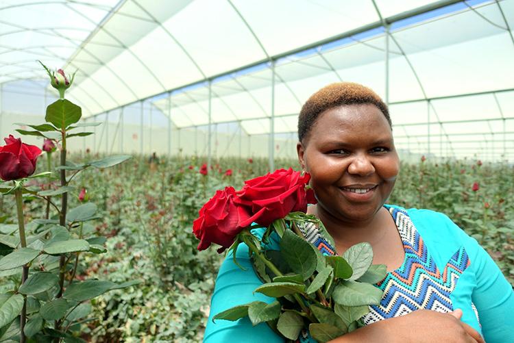 笑顔の中で育った、特別なケニアのバラ