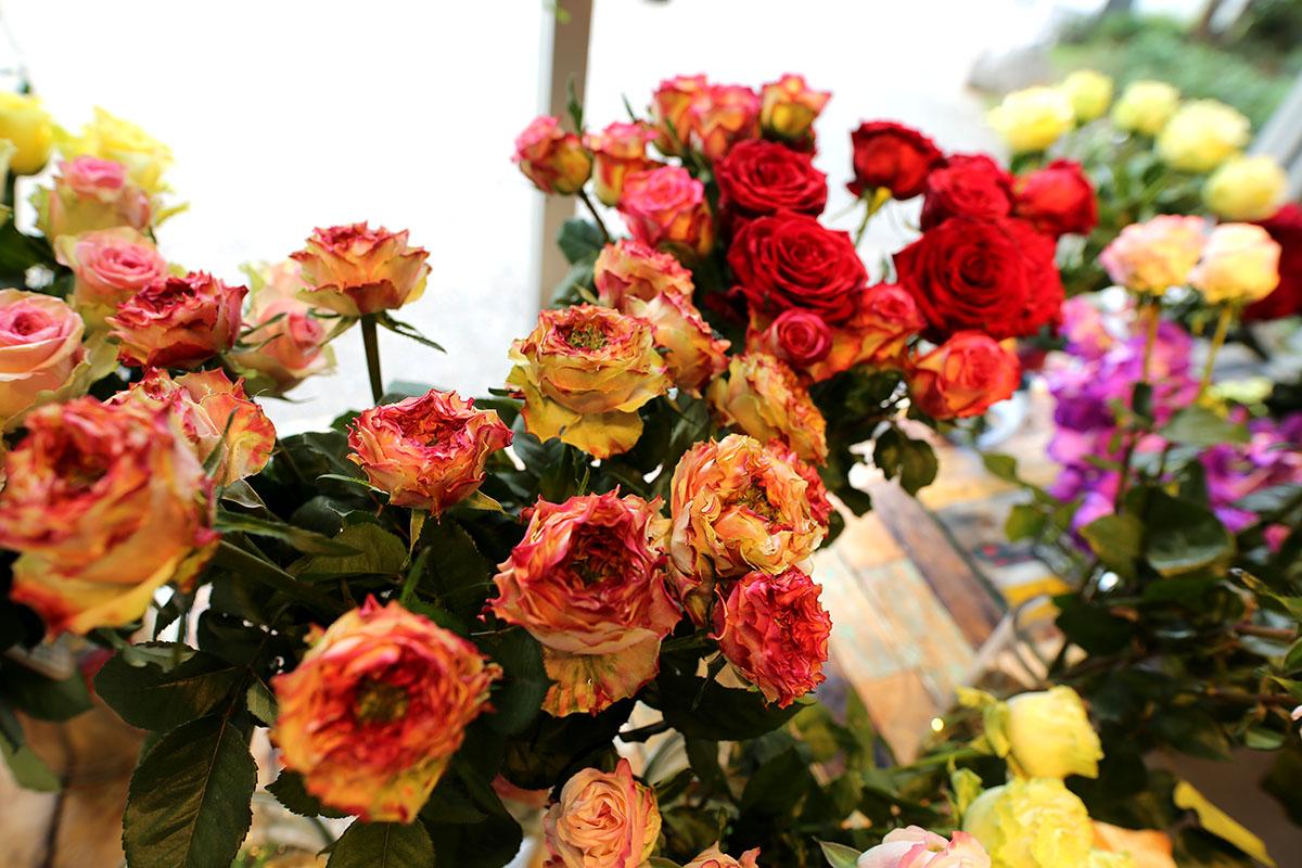 「世界の花屋」ポップアップストア&ワークショップリポート