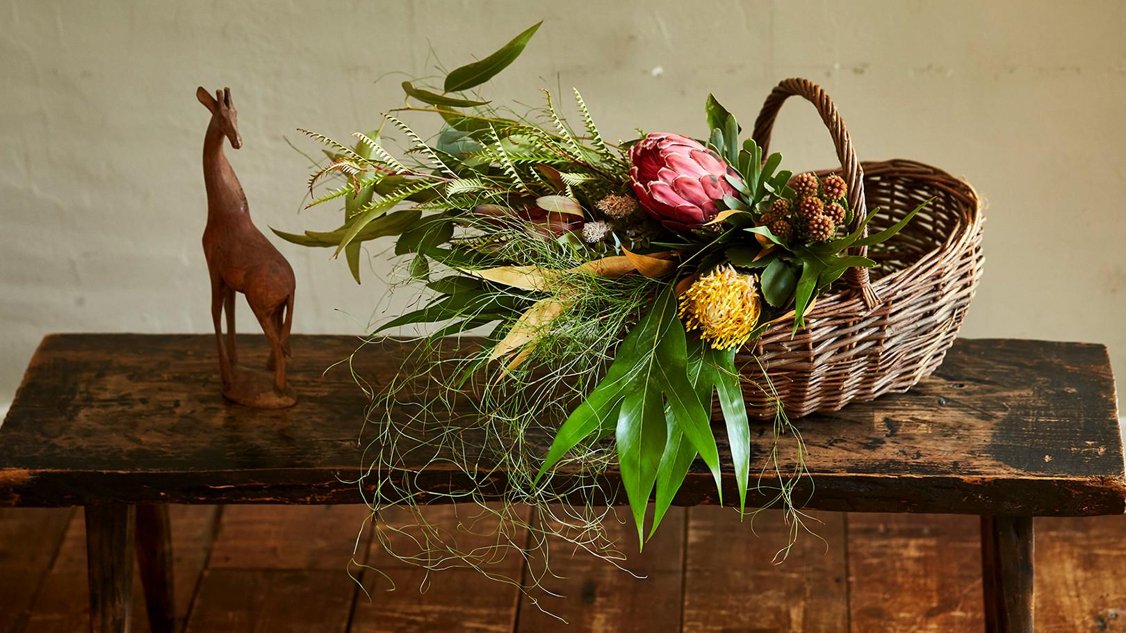 『世界の花屋』グランドオープン!アフリカの草花を集めたPop up storeと南アフリカプロテア農家のワークショップのお知らせです