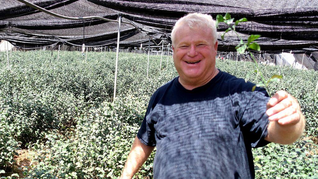 ルスカス栽培の達人、アモス・レヴィさん