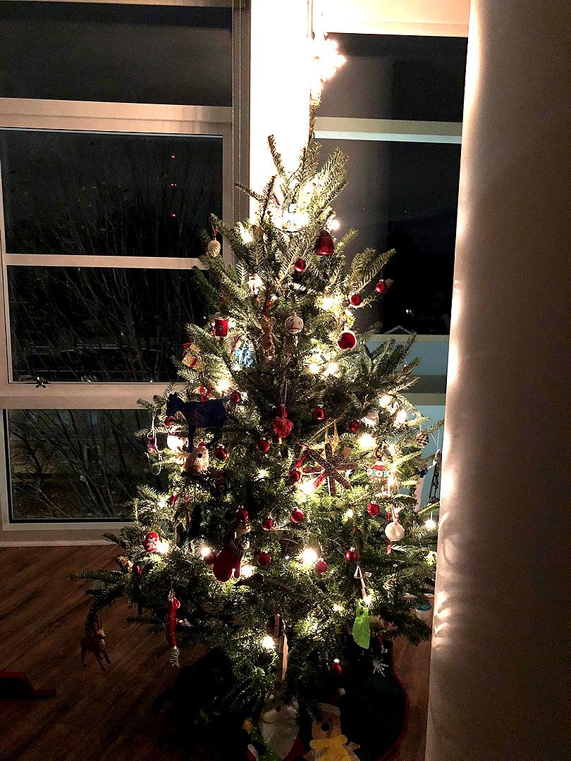 アメリカの12月〜クリスマスツリーが我が家にやってきたVol.3
