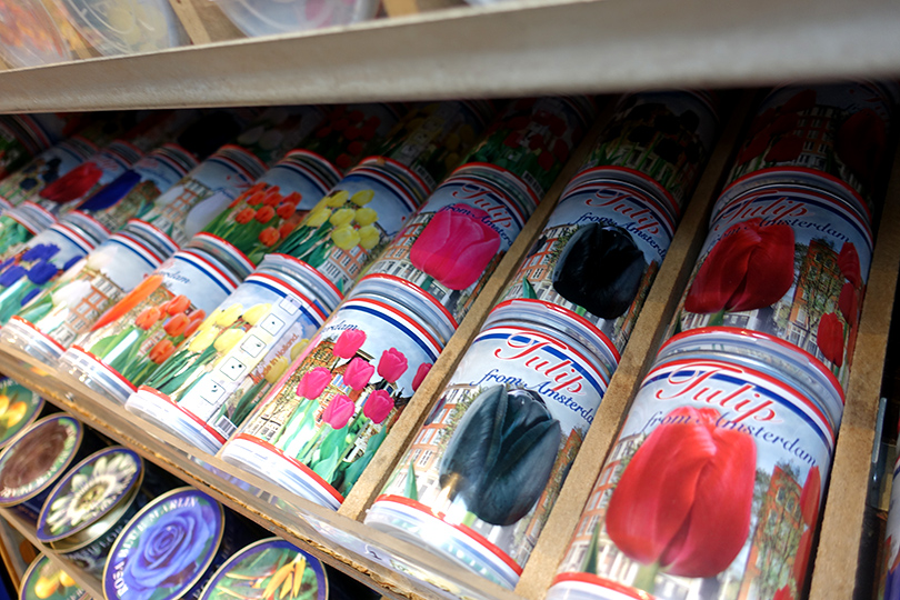 オランダ シンゲル運河に浮かぶ花市場 スタッフ杉本のヨーロッパ出張記 Vol.3