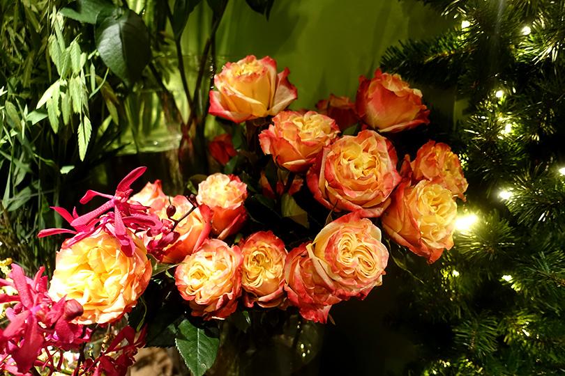 アムステルダムで大人気の花屋さん Menno Kroon ヨーロッパ 花のある暮らしを巡る旅 Vol.4