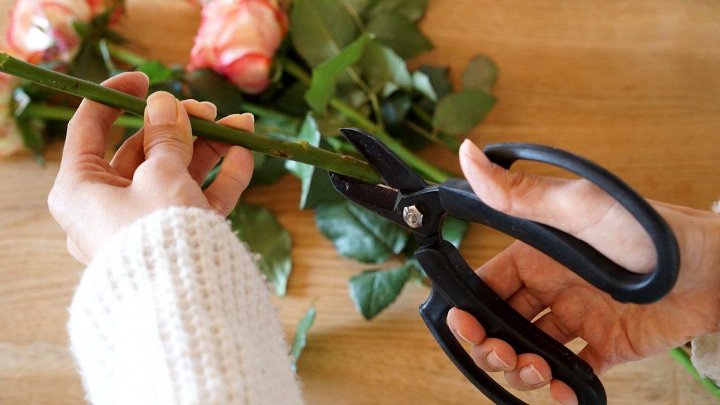 切り花をより長く楽しむための、10の方法