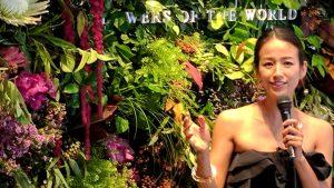 世界の花屋のなかのことVol.1 花咲き誇るフラワーウォールの裏側で