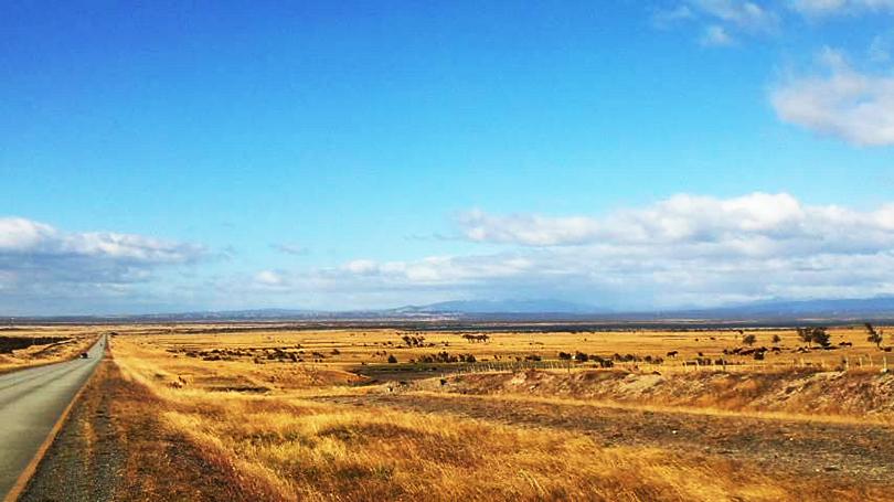 風の大地パタゴニアへ~チリ・プンタアレナス~