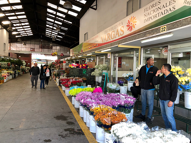 世界最南端の花市場??~チリ・サンティアゴ~