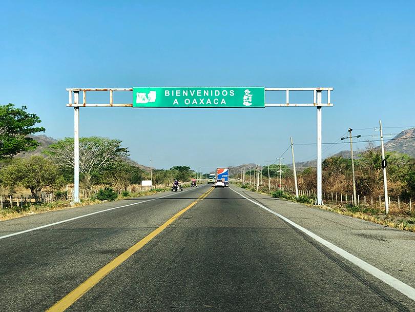 マンゴー天国をドライブ~メキシコ・タパナテペク~