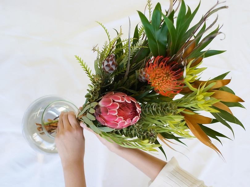 世界の花 定期便 珍しい花