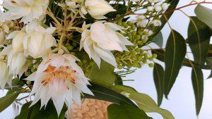 世界の花屋からの定期便 【世界の花のある暮らし】