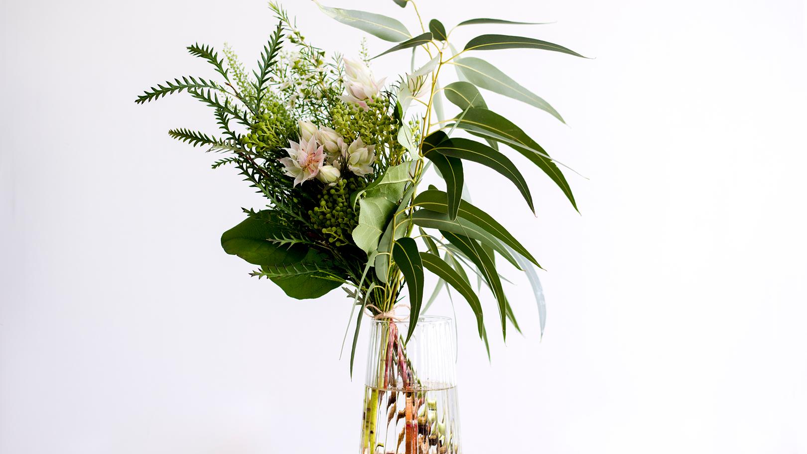 定期便:【世界の花のある暮らし】先行予約