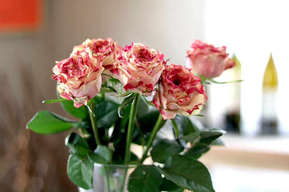 世界の花屋がおすすめ。誕生日には花束のプレゼントを。