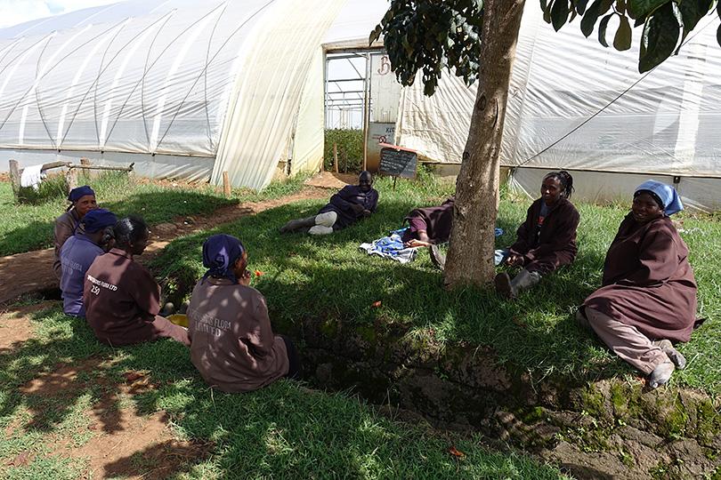 ソジャンミ農園の人びと~ケニア・ナクル~