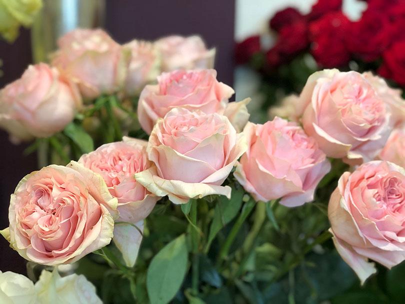 カラフルなお花屋さん~オーストリア・ウィーン~