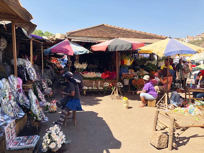 マラガシの花文化~マダガスカル・アンタナナリボ~