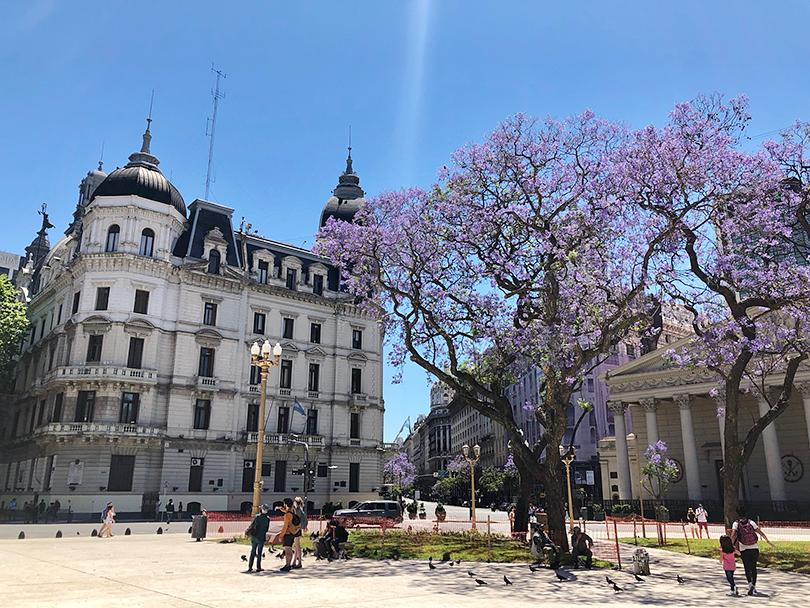 ブエノスアイレスの花屋街へ~アルゼンチン・ブエノスアイレス~