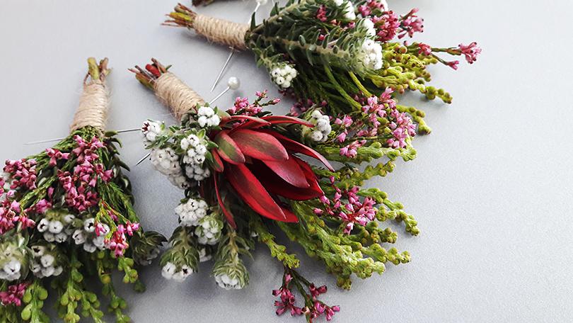 「たくさんの固有種が存在するエリカのご紹介」南アフリカ花便り Vol.10