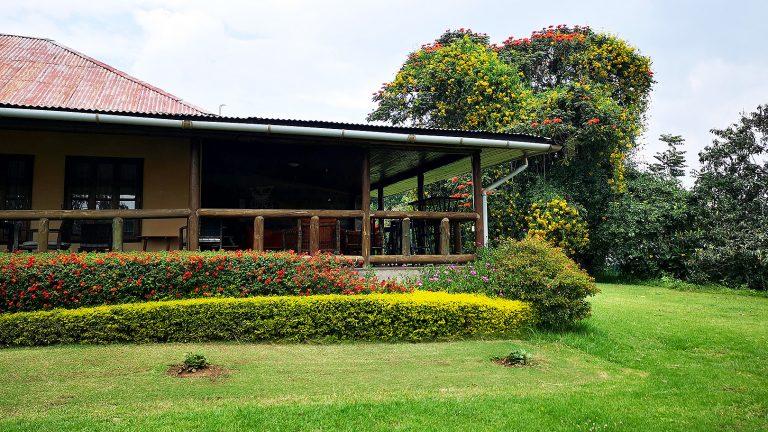 「ソジャンミ農園の新品種」ケニアのバラ農園の日々Vol.21