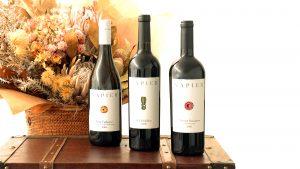 アフリカのワインのお取り扱いスタート!