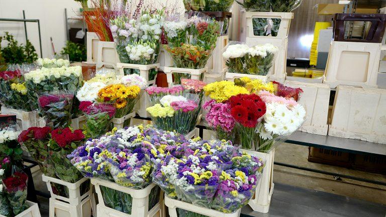 花市場へ~ポルトガル・リスボン~