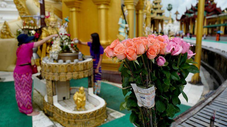 花と祈り~ミャンマー・ヤンゴン~
