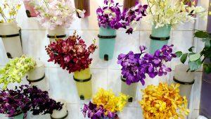 ブルネイの花文化~ブルネイ・バンダルスリブガワン~