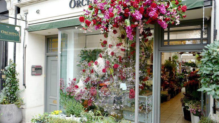 お花屋さん巡り~イギリス・ロンドン~